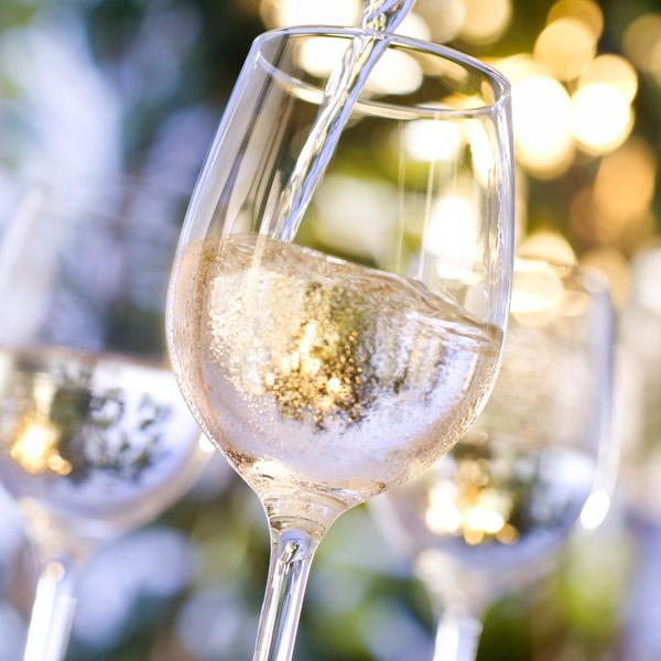 degustataion verres vin blanc